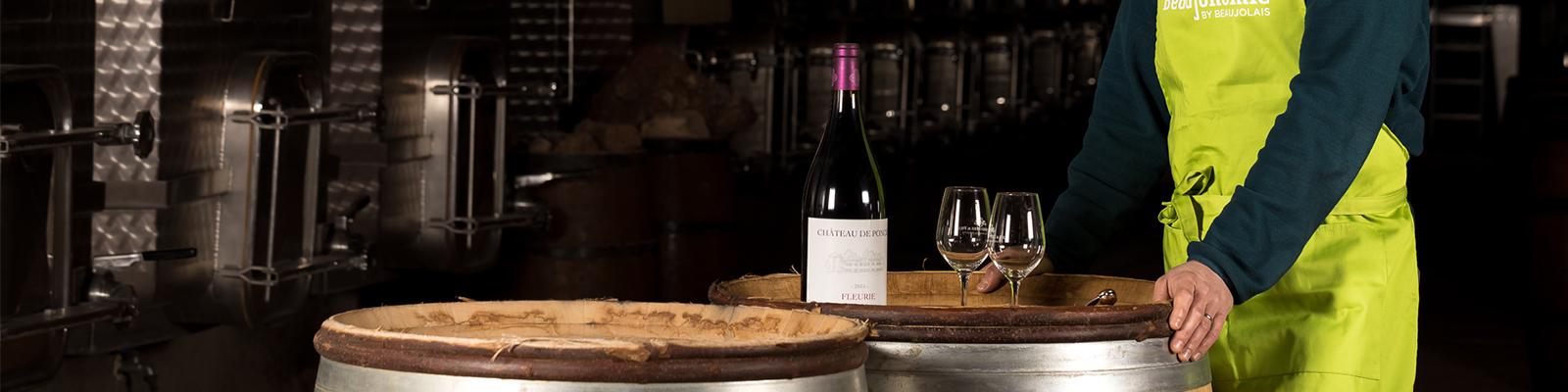 Découverte du domaine, visite du vignoble et repas en cuverie